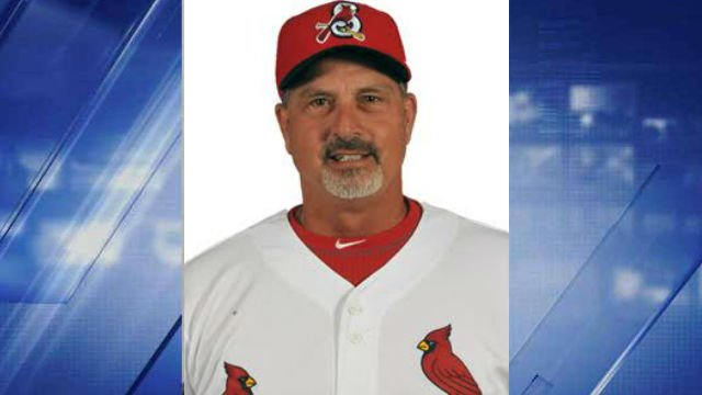 Springfield Cardinal