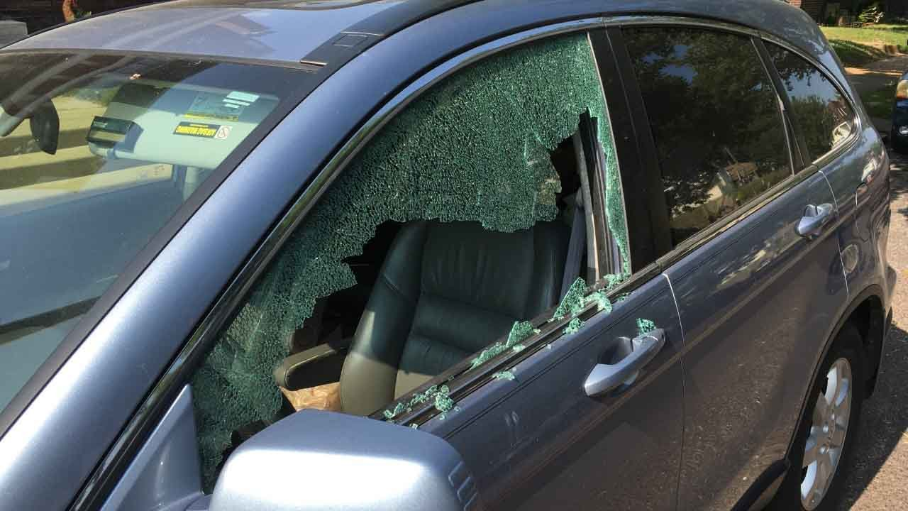 Vehicles parked in South City were vandalized over the weekend (Credit: KMOV)