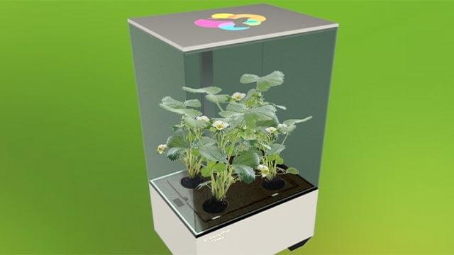 Nectar (Credit; Hummingbird Technologies / growithnectar.com)