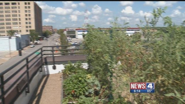 The Food Roof is an urban garden being used to ease the problem of food deserts. Credit KMOV