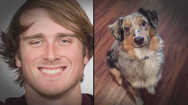 Missouri State quarterback Breck Ruddick allegedly abused a dog (on the right). Credit: KMOV