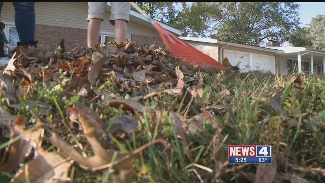 Students from Lindbergh Academy are raking leaves for people who can't rake themselves. Credit: KMOV