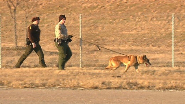 A K9 officer searches for a wanted suspect in East St. Louis, Illinois on Friday afternoon (KMOV)
