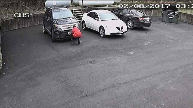 Surveillance cameras caught a suspect trying to steal the license plate of Mary Jane Smith in Cedar Hill. Credit: KMOV