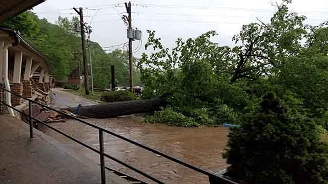 Flooding resulted in this fallen tree damaging the outside patio area of Meramec Caverns (Credit: Meramec Caverns)