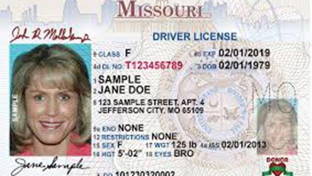 (Credit: MO DMV)