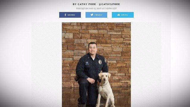 K-9 at center of controversy returned to department.