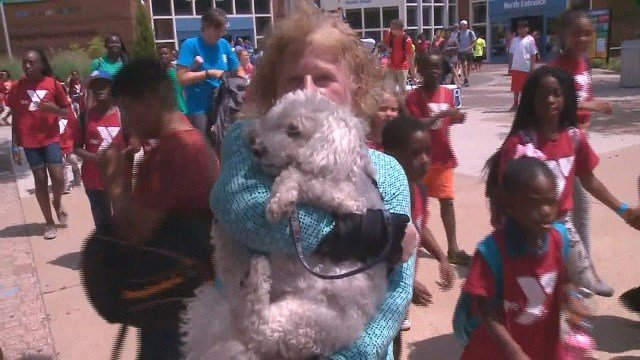 Sheila Altman told News 4 she went to the Saint Louis Zoo Wednesday to celebrate her 71st birthday with her 7-year-old Bichon Frise service dog named, Simcha.  (Credit: KMOV)