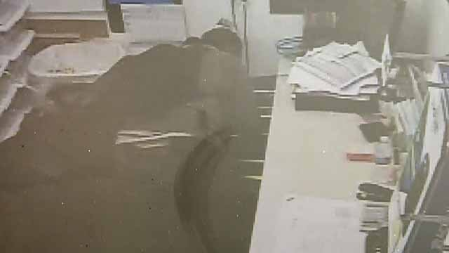 ThePevely Police Department is trying to identify a burglar caught on surveillance camera after he broke into the Dollar General Store in the 8600 block of Commercial Boulevard. Credit: Pevely PD