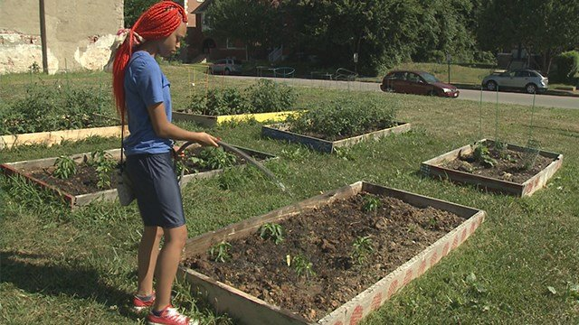A group of local teens spent the day working under the hot sun on Saturday in an effort to help improve their north St. Louis neighborhood. (Credit: KMOV)