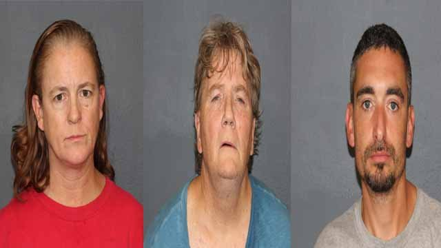 Pattie Mesenbrink, 49, Kevin Mesenbrink, 56, and Casey Flinn, 35, are charged with stealing $750 or more. They allegedly tried to steal a wheelchair ramp from a home in Overland. Credit:  Overland PD