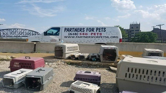 Partners for Pets' transport van broke down while transporting 30 animals to shelter. (Credit: Partners for Pets)