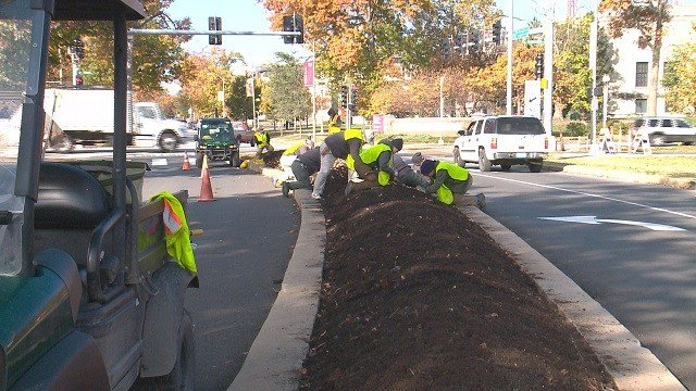 It may be November but that is not stopping volunteers from working hard at Forest Park. (Credit: KMOV)
