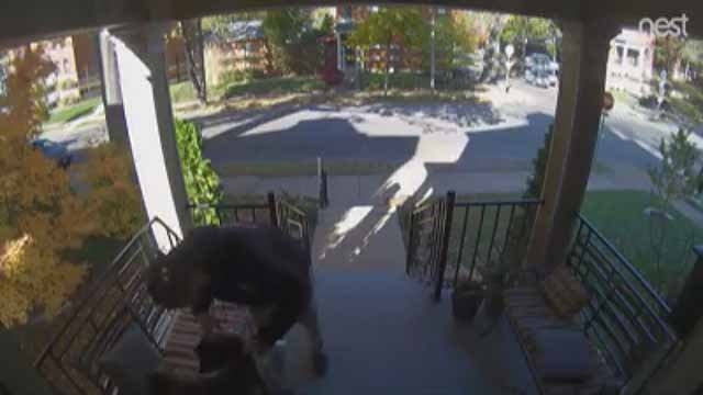 A porch pirate was caught on camera in south St. Louis stealing a bag with items that were meant for charity. Credit: Anna Dougherty