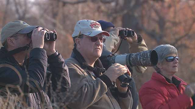 Bird watching in Forest Park. Credit: KMOV