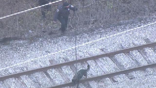 Officers searching with a K-9 in St. Louis County Tuesday (Credit: KMOV)