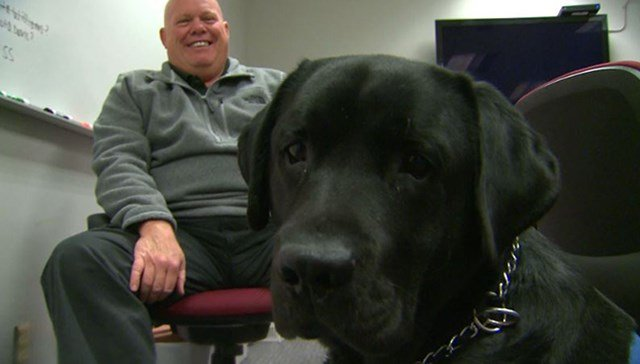 Violent crimes investigator Jeff Parker sits with  support dog Homer in St. Clair Co. state attorney office. (Credit: KMOV)