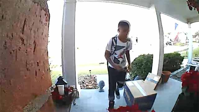 A young porch pirate was caught on camera in Wildwood Monday. (Credit: Ring)