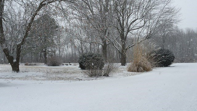 A viewer photo from Saturday morning's snow. (Credit: Kathy Smith)