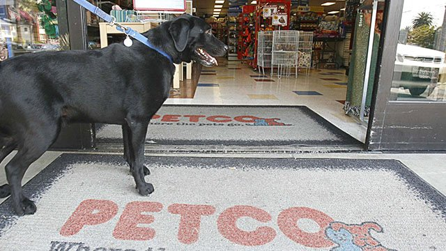 Dog at entrance to PETCO store, West Hollywood, California. (Credit: AP)