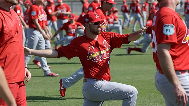 St. Louis Cardinals' Austin Gomber stretches during a spring training baseball workout Friday, Feb. 17, 2017, in Jupiter, Fla. (AP Photo/David J. Phillip)