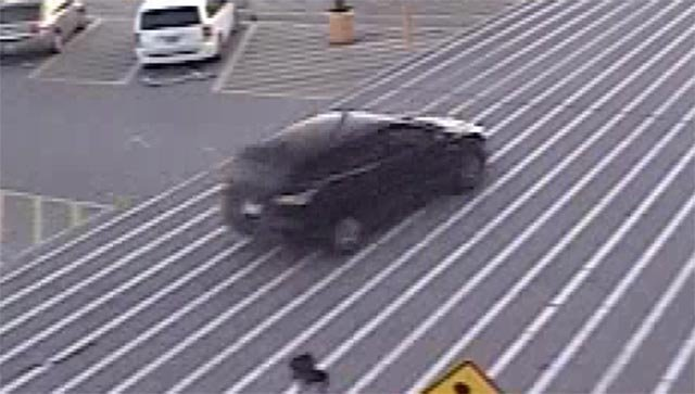 Carjacking suspect's vehicle (Credit: Granite City Police)