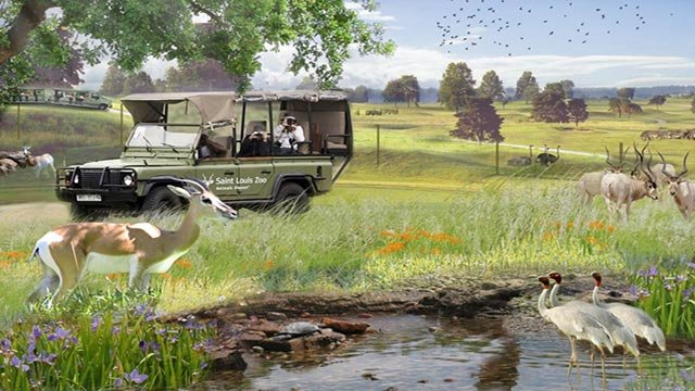 Rendering of St. Louis Zoo's proposed Safari Park Experience (Credit: St. Louis Zoo)