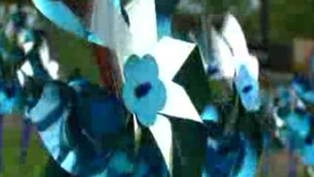 A pinwheel in a 'Pinwheel Garden,' which was planted to mark April as child abuse prevention month (Credit: KMOV)