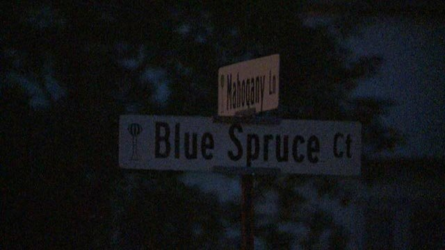 Street sign in Shiloh (Credit: KMOV)