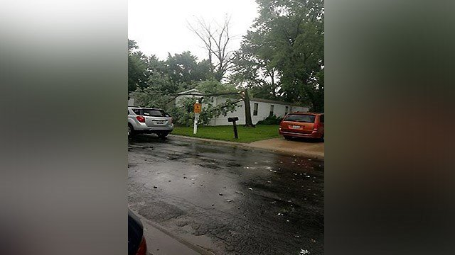 News 4 Viewer Jessica told us a tree hit a mobile home located in Holiday Mobile Home Park near Horseshoe Lake and I-255. (Credit: News 4 Viewer Jessica Michelle)