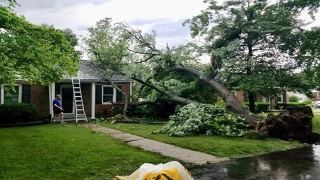 News 4 spoke with a man who was on the phone with his mother when a tree came crash down on a house in the 7050 block of Rhodes Rd. in Affton. (Credit: KMOV)