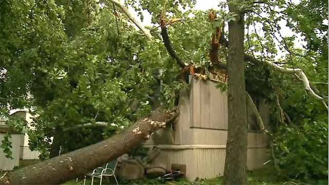 A tree snapped in half and crashed on a mobile home in House Springs when storms moved through Thursday. Credit: KMOV
