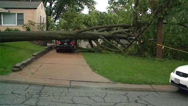 A tree fell onto several homes when storms rolled through Affton Tuesday night. Credit: KMOV