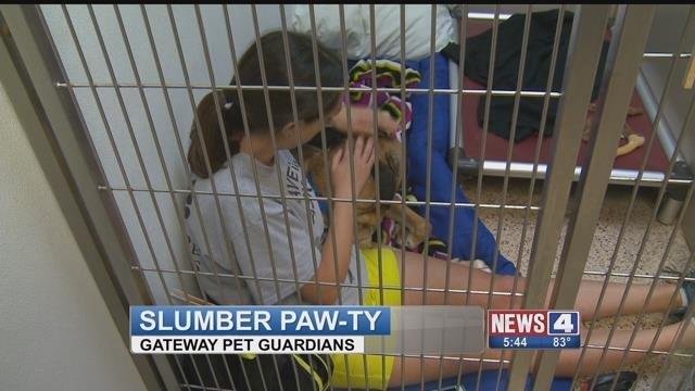 Volunteers spent the night inside of a kennel with rescued animals for slumber party styled fundraiser. (Credit: KMOV)