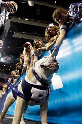 Butler's mascot Blue II arrives in the stadium before the men's NCAA Final Four college basketball championship game between Connecticut and Butler  Monday, April 4, 2011, in Houston. (AP Photo/David J. Phillip) By David J. Phillip