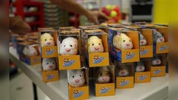 """Toys """"R"""" Us employee Ray Singer stacks 100 Zhu Zhu Pets on a table before Black Friday holiday shopper are allowed inside Toys """"R"""" Us in Camp Hill, Pa., late Thursday, Nov. 26, 2009. (AP Photo/Carolyn Kaster) By Carolyn Kaster"""