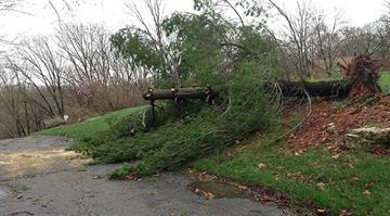 Wildwood storm damage By Sarah Heath