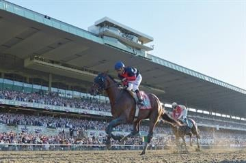 ELMONT, NY - JUNE 07:  Tonalist #11, ridden by Joel Rosario, races to the finish line enroute to winning the 146th running of the Belmont Stakes at Belmont Park on June 7, 2014 in Elmont, New York.  (Photo by Drew Hallowell/Getty Images) By Drew Hallowell