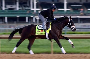 LOUISVILLE, KY - MAY 01: Vinceremos runs on the track during the morning training for the Kentucky Derby at Churchill Downs on May 1, 2014 in Louisville, Kentucky.  (Photo by Andy Lyons/Getty Images) By Andy Lyons