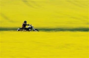 A motorcyclist rides his machine on a road leading though yellow blossoming rape fields near Kalkriese, northern Germany, Monday, May 3, 2010. (AP  Photo/dapd/Joerg Sarbach) By Joerg Sarbach