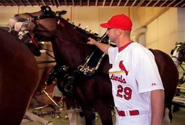 St. Louis Cardinals pitcher Chris Carpenter pets one of the Budweiser Clydesdales before the Cardinals' home opener baseball game against the Houston Astros on Monday, April 12, 2010, in St. Louis. (AP Photo/Jeff Roberson) By Jeff Roberson