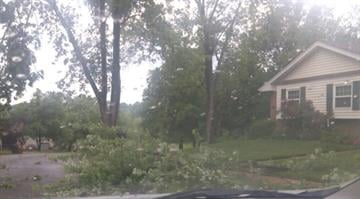 Trees down in Ballwin. By Belo Content KMOV