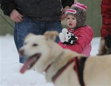 Two-year-old Skylar Dupuis, from Eagle River, Alaska, watches the ceremonial start of the Iditarod Trail Sled Dog Race, Saturday, March 3, 2012 in Archorage, Alaska. (AP Photo/Anchorage Daily News, Bob Hallinen) By Bob Hallinen