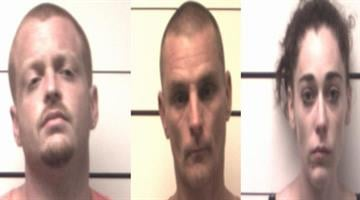 Blake Edgar (L), Daniel McManness (C), and Asley Arnold (R) face charges after they allegedly tried to steal power tools from a store in O'Fallon, Mo.