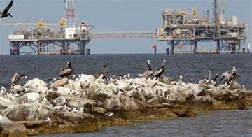 Brown Pelicans and other birds thrive on the rocks near Dauphin Island, Ala., Monday, April 18, 2011. Natural gas rigs operate in the Mobile Bay waters at rear. (AP Photo/Dave Martin) By Dave Martin
