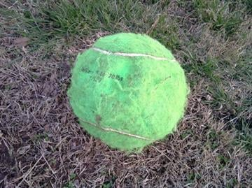 Kickball that a young boy was playing with when he was caught in the crossfire of a drive-by shooting.