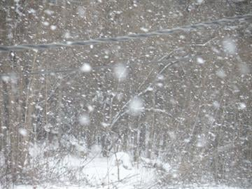 Snow in Godfrey, Illinois earlier this year. By KMOV Web Producer