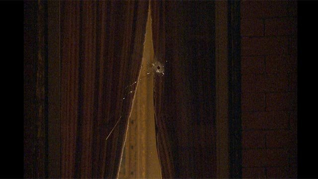 A South City home was hit with gunfire overnight in south St. Louis