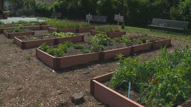 A garden at Keysor Elementary School in Kirkwood.