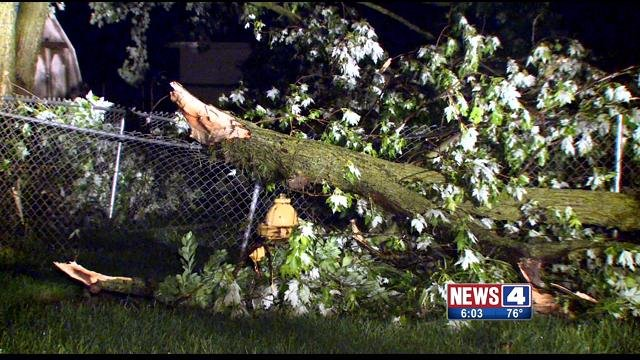 A fallen tree was part of the storm damage in Hawk Point.